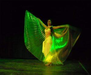 Silvia Layla - Danza con le ali